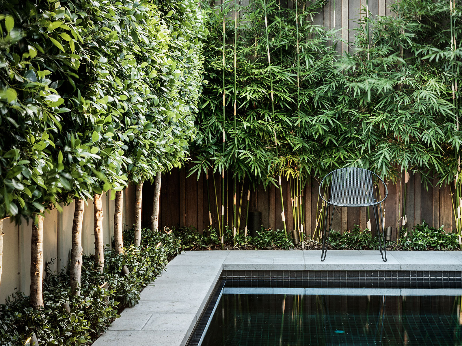 Landscape garden design in melbourne nathan burkett design for Garden design pictures